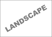 custom design landscape