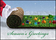 Holiday Sod Christmas Card